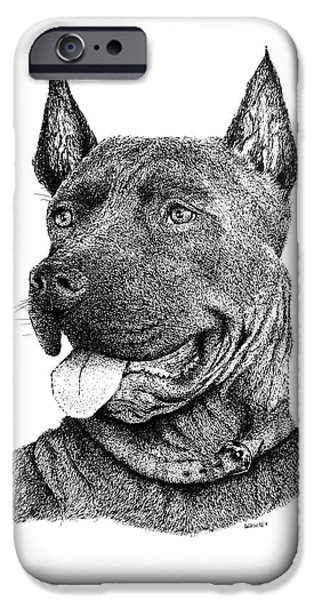 Dog Close-up Drawings iPhone Cases - Bolo Black and White drawing with pen and ink of a Dog iPhone Case by Mario  Perez