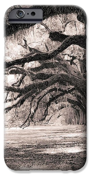 Boone Hall Plantation Live Oaks iPhone Case by Dustin K Ryan