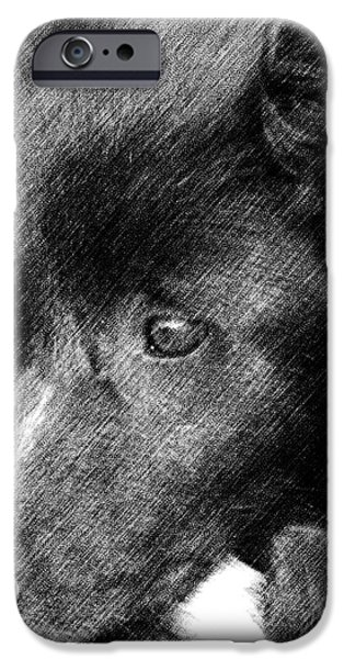 Border Collie In Pencil iPhone Case by Smilin Eyes  Treasures