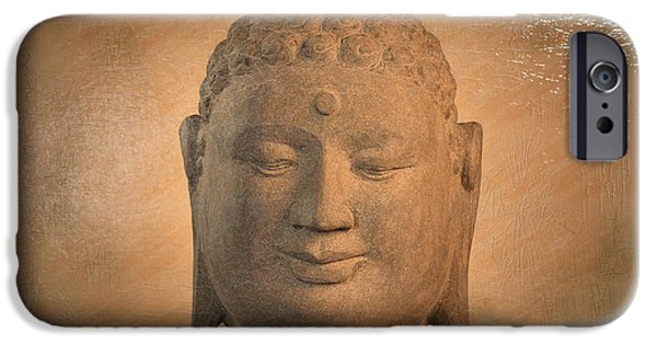 Buddhist Sculptures iPhone Cases - Borobudur Antique Oil Effect iPhone Case by Terrell Kaucher