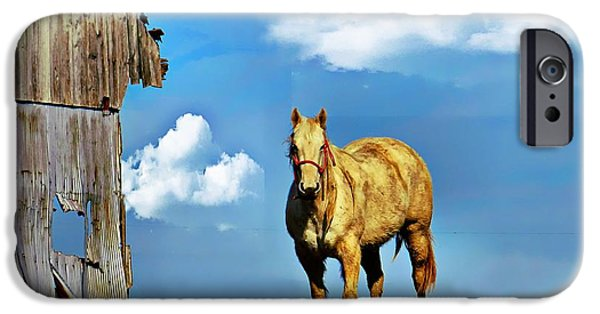 Horse iPhone Cases - Both a Little Raggedy iPhone Case by Julie Dant