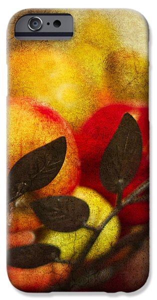 bounty iPhone Case by Rebecca Cozart