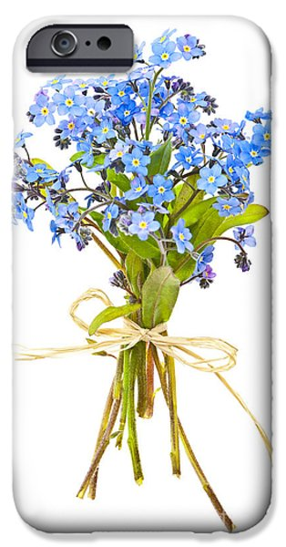 Flora Photographs iPhone Cases - Bouquet of forget-me-nots iPhone Case by Elena Elisseeva