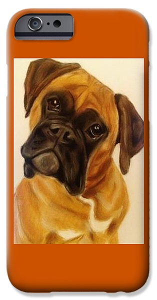 Boxer iPhone Cases - Boxer Dog iPhone Case by Diane Leuzzi