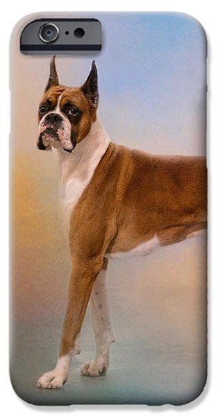 Boxer iPhone Cases - Boxer On A Beautiful Day iPhone Case by Jai Johnson