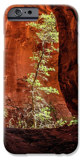 Sedona iPhone Cases - Boynton Canyon 07-034 iPhone Case by Scott McAllister