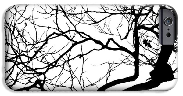 Graphic Design iPhone Cases - Branch B and W iPhone Case by David Vale