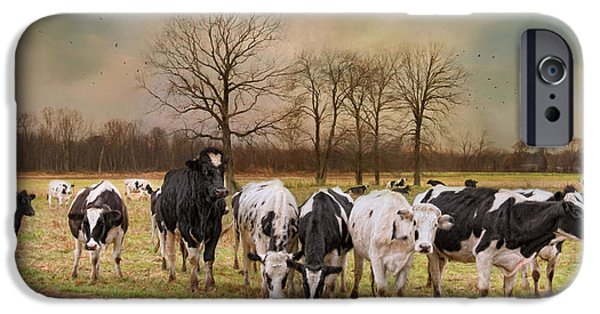 New England Dairy Farms iPhone Cases - Braveheart iPhone Case by Robin-lee Vieira