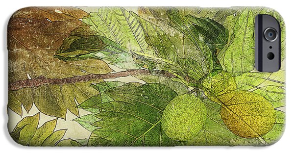 Art Medium iPhone Cases - Breadfruit iPhone Case by Kaypee Soh - Printscapes