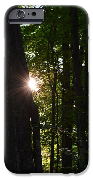 Nature Abstract iPhone Cases - Breaking Through iPhone Case by Richard Andrews