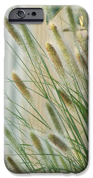 Florals iPhone Cases - Breeze iPhone Case by Holly Kempe