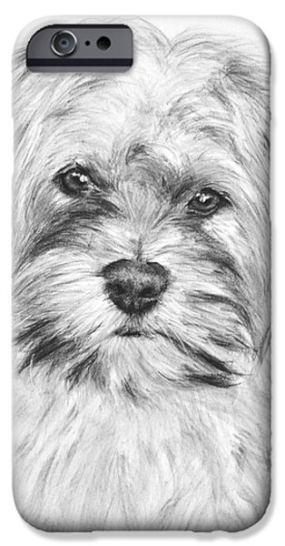 Dog Close-up Drawings iPhone Cases - Brewser the Shih Tzu iPhone Case by Kate Sumners