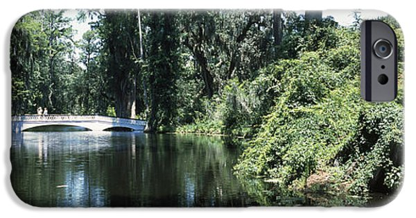 Garden Scene iPhone Cases - Bridge Across A Swamp, Magnolia iPhone Case by Panoramic Images