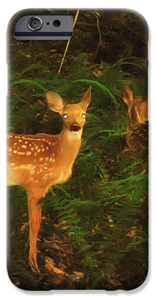 Bright Eyes iPhone Case by Bill Cannon
