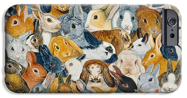Rabbit iPhone Cases - Bright Eyes iPhone Case by Pat Scott