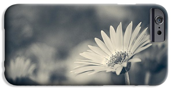 Nature Abstract iPhone Cases - Brilliance - Monochrome iPhone Case by F Leblanc