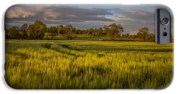 Crops iPhone Cases - British farmland in late spring iPhone Case by Chris Fletcher