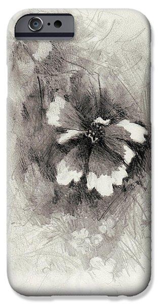 Nature Divine iPhone Cases - Broken Blossom iPhone Case by Rachel Christine Nowicki