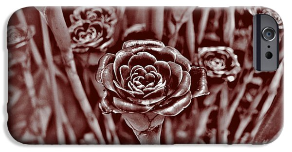 Plant Tapestries - Textiles iPhone Cases - Bronze Rose iPhone Case by Edna Weber