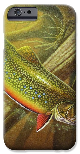 River iPhone Cases - Brook Trout Cover iPhone Case by JQ Licensing