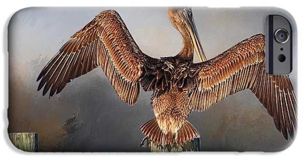 Wild Animals iPhone Cases - Brown Pelican - Strike A Pose iPhone Case by HH Photography