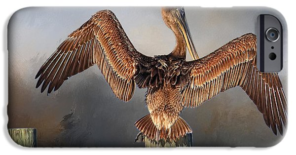 Juvenile Wall Decor iPhone Cases - Brown Pelican - Strike A Pose iPhone Case by HH Photography
