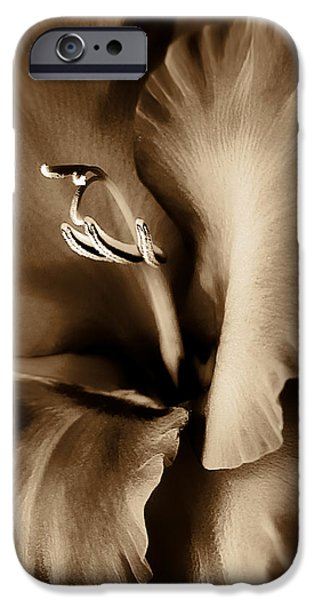 Gladiolas iPhone Cases - Brown Velvet Gladiolus Flower iPhone Case by Jennie Marie Schell