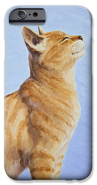 Orange Tabby Paintings iPhone Cases - Brushing the Cat iPhone Case by Crista Forest