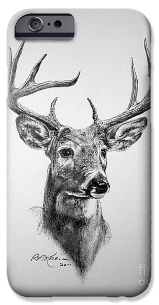 Nature Study Drawings iPhone Cases - Buck Deer iPhone Case by Roy Kaelin