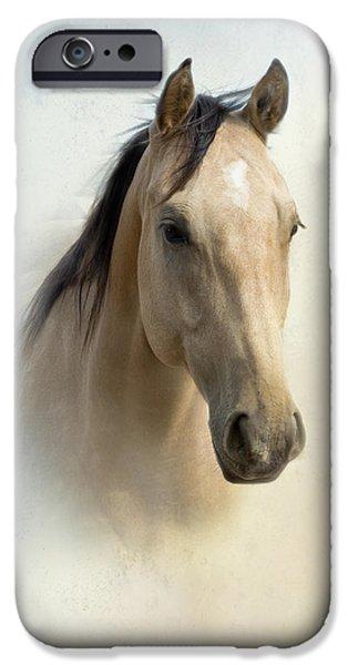 Quarter Horses iPhone Cases - Buckskin Beauty iPhone Case by Betty LaRue