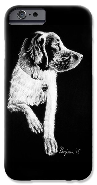 Setter Pointer iPhone Cases - Buddy iPhone Case by Benjamin Gassmann