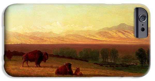 Hudson River iPhone Cases - Buffalo on the Plains iPhone Case by Albert Bierstadt