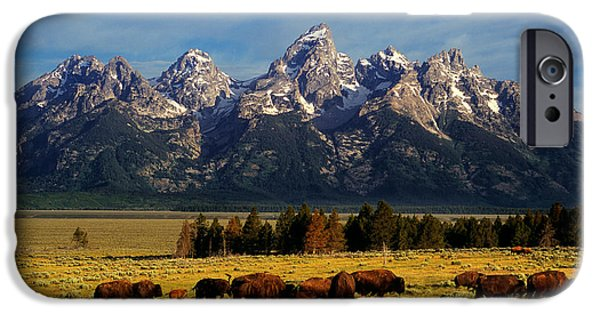 Most Popular iPhone Cases - Buffalo under Tetons iPhone Case by Leland D Howard