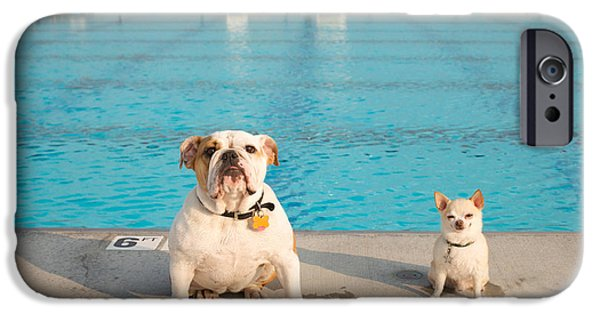 Dog iPhone Cases - Bulldog And Chihuahua By The Pool iPhone Case by Gillham Studios