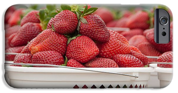 Agricultural iPhone Cases - Bunches of Strawberries iPhone Case by Joye Ardyn Durham