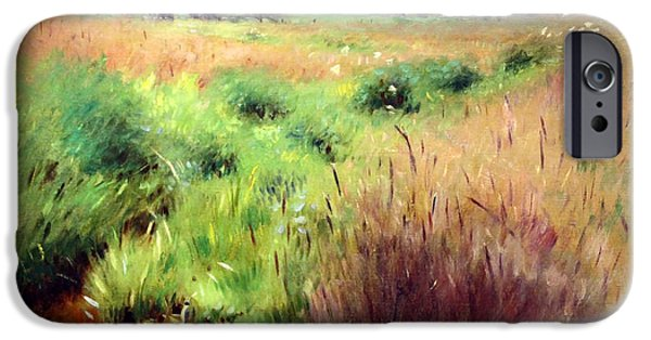 Cora Wandel iPhone Cases - Bunkers Marshland In Medfield iPhone Case by Cora Wandel