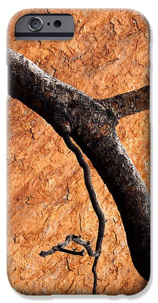 Burnt Orange iPhone Case by Mike  Dawson