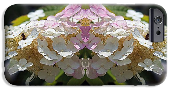Abstract Digital Photographs iPhone Cases - Busy Bee Takes a Break five iPhone Case by Daniel Unfried