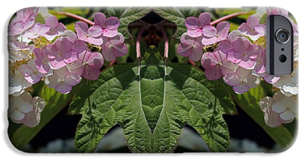 Abstract Digital Photographs iPhone Cases - Busy Bee Takes a Break one iPhone Case by Daniel Unfried