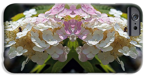 Abstract Digital Photographs iPhone Cases - Busy Bee Takes a Break six iPhone Case by Daniel Unfried