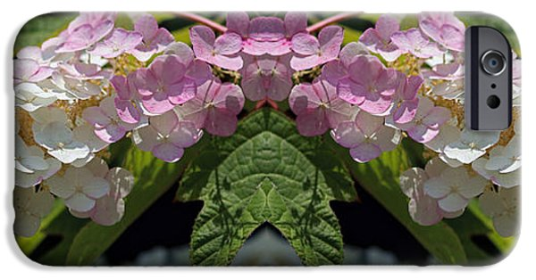 Abstract Digital Photographs iPhone Cases - Busy Bee Takes a Break three iPhone Case by Daniel Unfried
