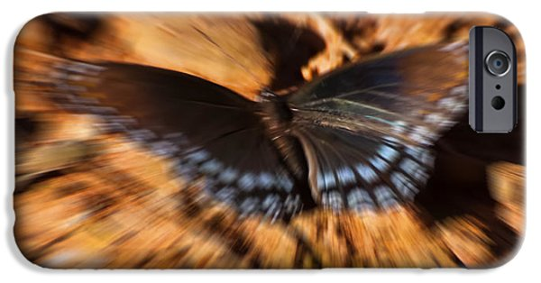 Admiral Digital iPhone Cases - Butterfly Dreams iPhone Case by Chris Flees