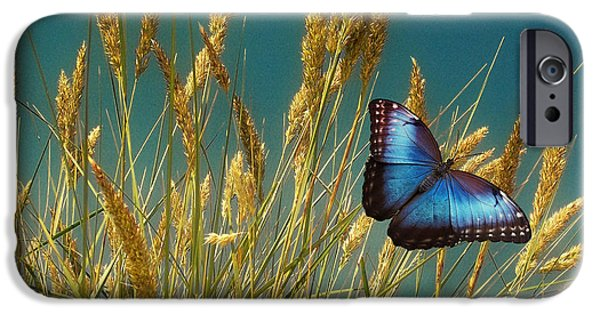 David iPhone Cases - Butterfly Fields of Grain Blue iPhone Case by David Dehner