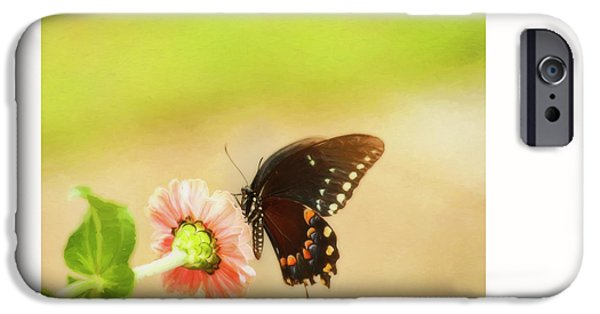 Pleasure iPhone Cases - Butterfly Kisses iPhone Case by Olahs Photography