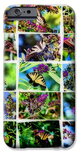 Butterfly Plethora II iPhone Case by Gary Adkins