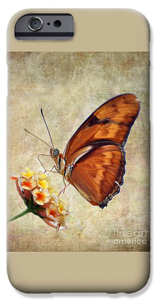 Close Up Pyrography iPhone Cases - Butterfly iPhone Case by Savannah Gibbs