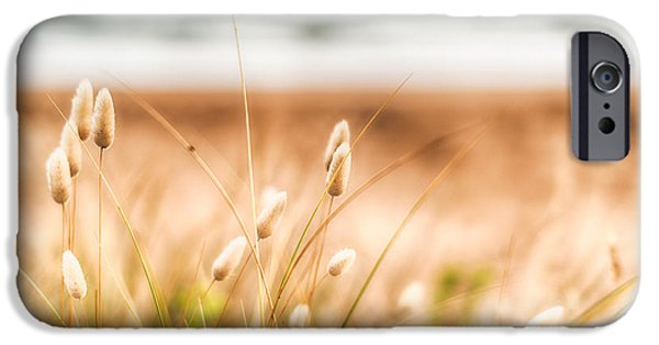 Grass iPhone Cases - Button Grass iPhone Case by Jonathan Williams