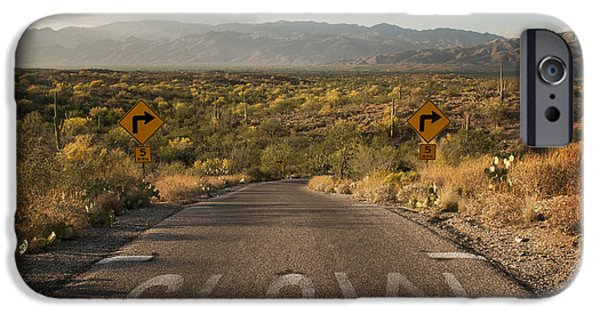 Mountain Road iPhone Cases - Cactus Landscape iPhone Case by Juli Scalzi