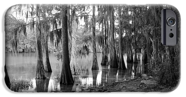 Caddo Lake iPhone Cases - Caddo Lake - Black and White iPhone Case by Carol Groenen