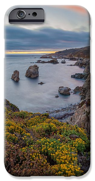Pines iPhone Cases - California Coast in Summer iPhone Case by Jonathan Nguyen